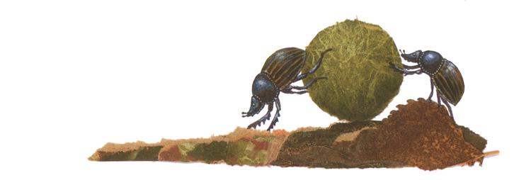 Иллюстрация Анне Мёллер