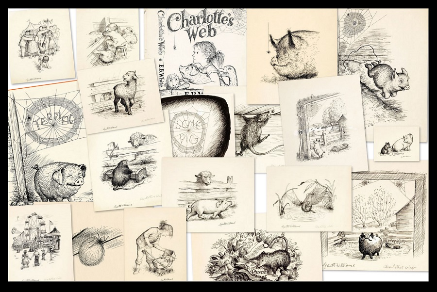 charlottes web illustrations